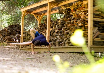 Playing with Dragonfly pose at the wood pile.
